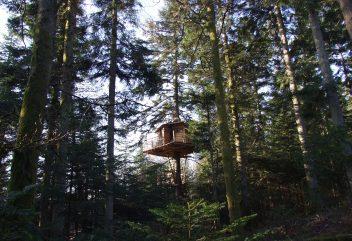 Les nids cosy des Vosges – Exterieur dans les arbres ©D.R. – Grand Est / Vosges